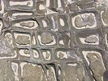 dendritic stone